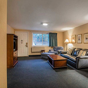 photo of hotel suite living room